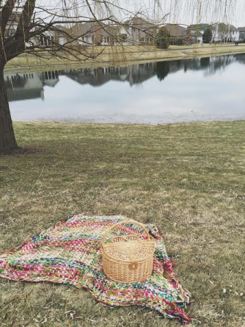 Essentials for a perfect picnic