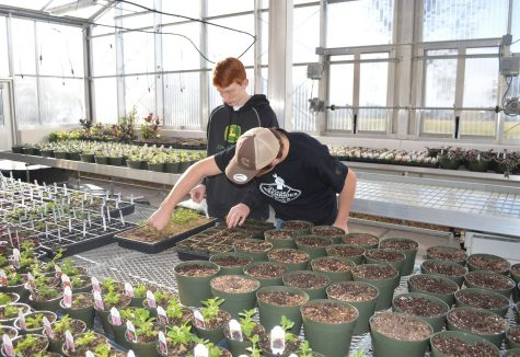 A sneak peek into Intro to Horticulture