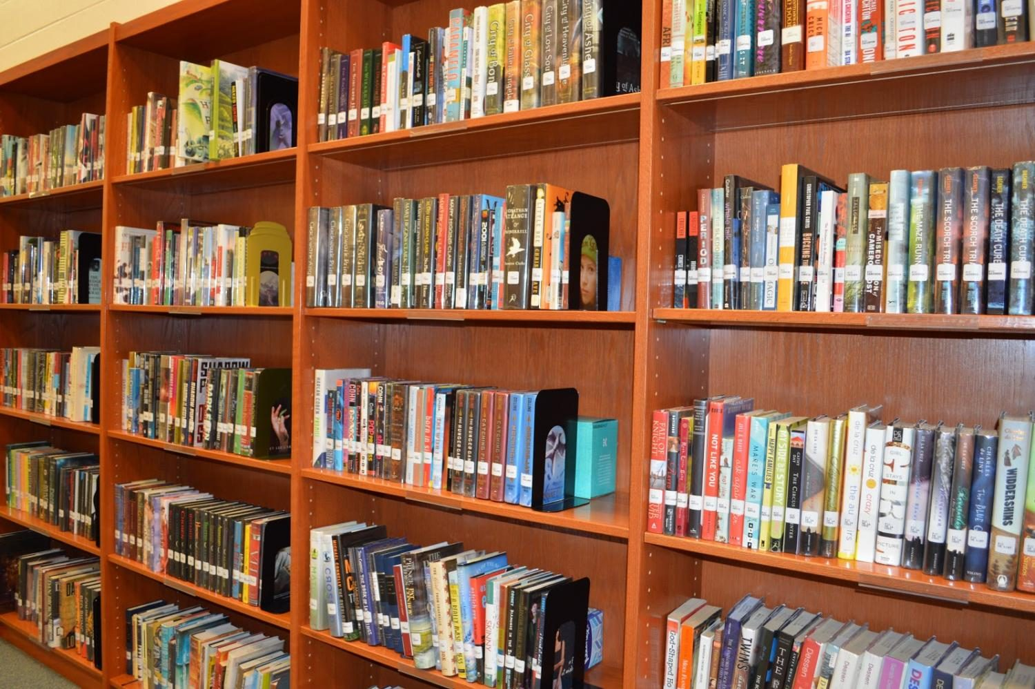 The+Kaneland+High+School+library%2C+is+filled+with+books.+If+you+are+looking+for+a+certain+book%2Cthe+library+catalog+is+available.