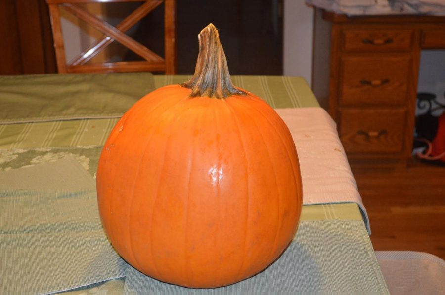 THE-OG-PUMPKIN