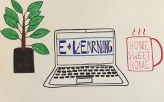 Kaneland's move toward E-learning
