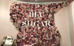 HEY SUGAR, located in downtown Geneva, is a photogenic spot to get unique desserts and to take pictures with friends. The bakery has been open since July 17, when the COVID-19 pandemic was in full effect and many small businesses were struggling to stay afloat.